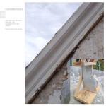 raport Daia21