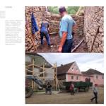 raport Daia31